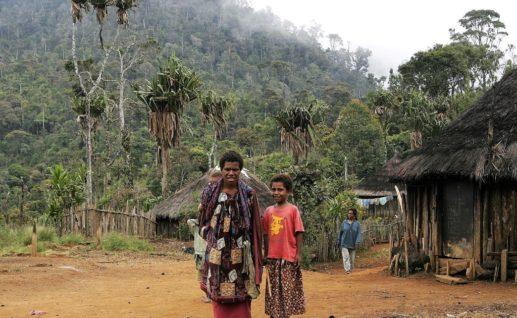 高地の涼しい気候の中、原生植物や野鳥を観察しながらトレッキング。初心者向けなので安心です!道中の村の人々が作った郷土料理の昼食付きです
