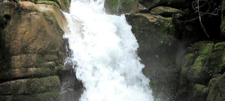 ゴロカ地区から車で30分ほどのカベベ村で、渓流とカベベ滝を散策するネイチャーウォークです。渓流はゴロカの町の水源となっています
